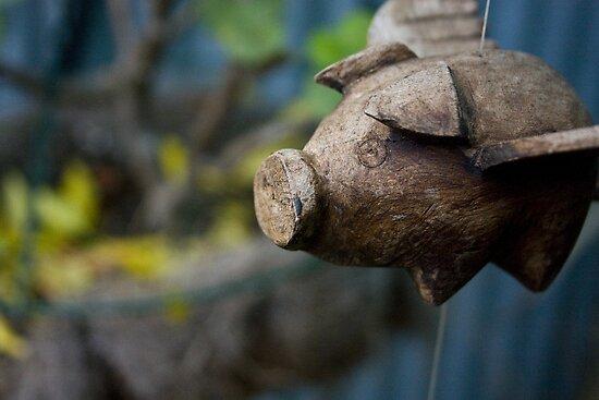 Pig Flu Flies by Mandi Whitten