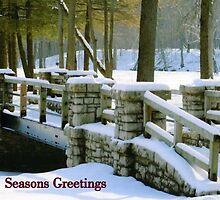 Seasons Greetings by kkphoto1