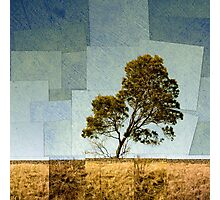 Abstract Landscape Photographic Print