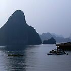 Halong Bay....Vietnam by graeme edwards