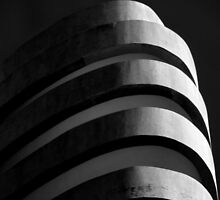 Concrete curves by Erika Gouws