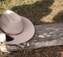 Modern Cattleman- Akubra hat on a log by Laura Sykes