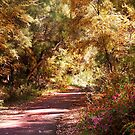 Colourful path  round the lake by georgieboy98