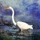 Egret Mixed Media Photograph by BornBarefoot