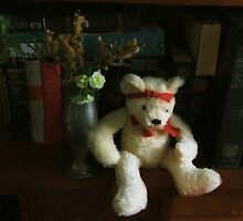 The Book Bear by RC deWinter