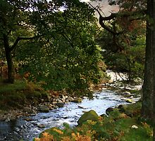 wasdale stream by cassie50