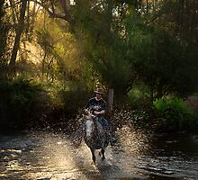 Fording the Stream by Heather Prince