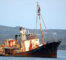 Cheynes 11 - Rusting Whaling Ship by Eve Parry