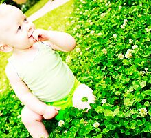 Baby In The Clover  by Amanda  Stewart