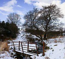 Winter Bridge by David Lewins