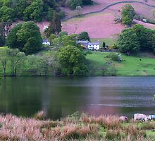 Rydal Water 2 by WatscapePhoto