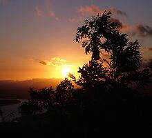 View from the lighthouse, Cooktown by Alex Bonner