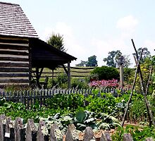 Buffalo Springs Herb Farm_Kitchen Garden by Hope Ledebur