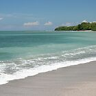 Costa Rican Beach On The Pacific Ocean by JaneLoughney