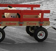 The Litte Red Wagon by Aaron Caven