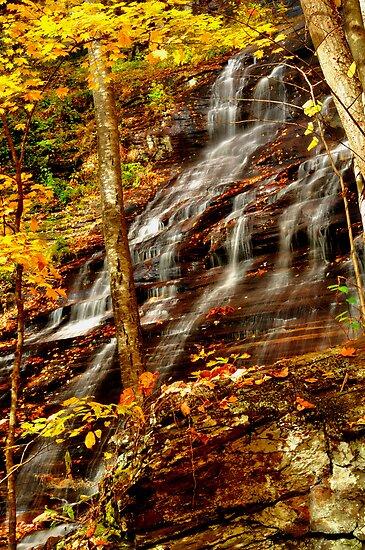 Beauty in Flow 2 by Miles Moody