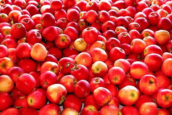 It's Flu  Season!  Eat an Apple a Day, Keeps the Doctor Away by Chuck Gardner