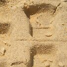 Fresh 4wd tyre treads imbedded in the sand (double Island Point) by mandyemblow