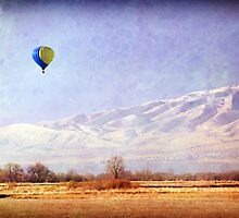 Hot Air Balloon - American Fork, Utah by Ryan Houston