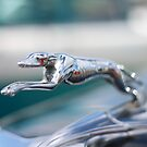 Hood ornament by JaimeWalsh