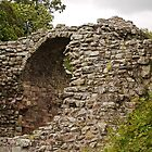 Gateway to the Castle by Ryan Davison Crisp
