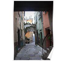 Carrugio in Riomaggiore Poster