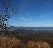 Skyline Drive by Leslie Wood