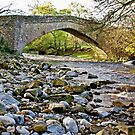 Packhorse Bridge - Coverdale by Trevor Kersley