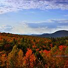 New Yorks Adirondack region XX by PJS15204