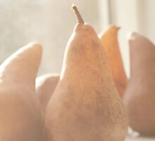 Sweet Pears by ©Maria Medeiros