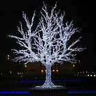 Crystalline Tree by Detlef Becher