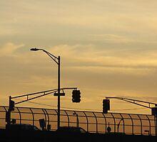 Garden State Parkway by eelsblueEllen