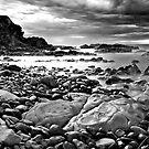 Pebble Beach by Ian  James