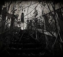 Ghost by Sascha Cameron