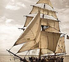 Tall Ship Hawaiian Chieftain by Erin Kanoa