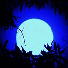 a bright,blue moon for you by ANNABEL   S. ALENTON