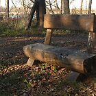 Quiet Country Bench by DPKDesign