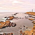 """The Quiet Watcher"" - Point Arena Lighthouse by William Moore"