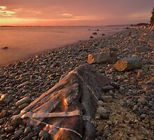 Striped Rock at Crescent Beach by Ryan Watts