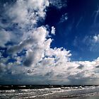 Windy Day at Tennyson Beach 1 by Lucia Baldini