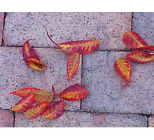 On the Sidewalk #2 Photographic Print