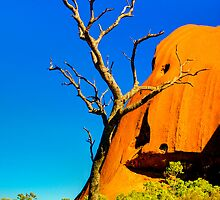 Northern Territory - Uluru - Mala walk 4 by Geoffrey Thomas