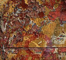 Concrete Lichen by Natalie Ord