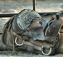 Retired Saddle by Susanne Correa