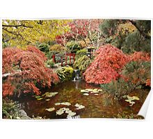 Japanese Garden in the Fall, ( please view large ) Poster