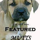 Banner for Mutts group by feeee
