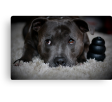 Me and my Kong Canvas Print