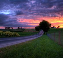 Sunset on a Country Road by Michael Mill