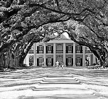 Oak Alley in Black and White by Lori Gagliano