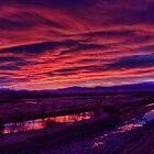 Lower Ohau River Pre-dawn by Antony Burton